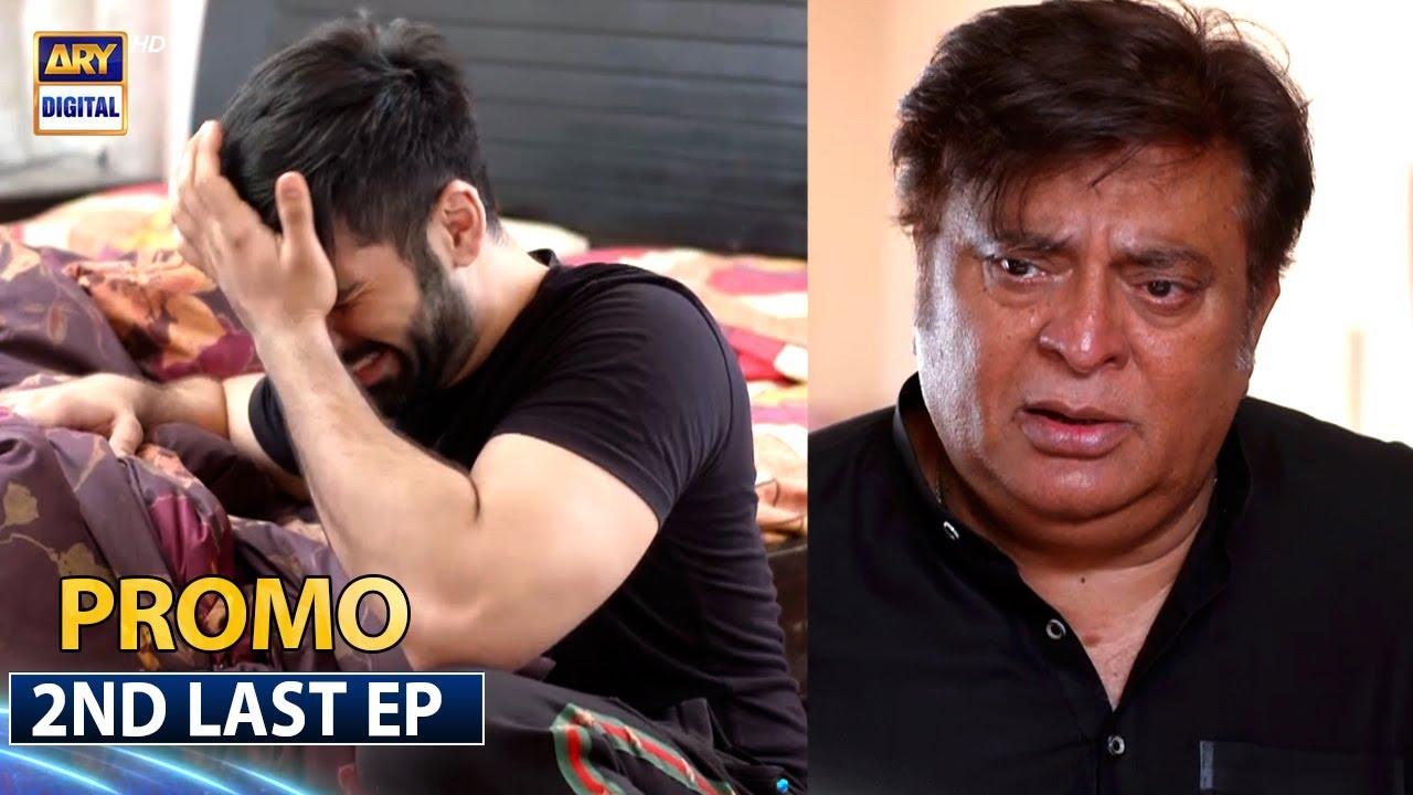 Download Mujhay Vida Kar 2nd Last Episode  | Promo |  ARY Digital Drama