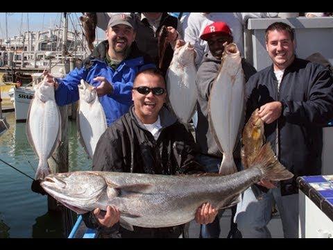 Deep sea fishing trips in san francisco youtube for Deep sea fishing san francisco