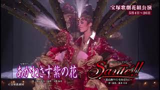 博多座5月『宝塚歌劇花組公演』15秒SPOT