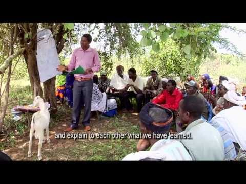 'Schools Without Walls', (Agro)Pastoralist Field Schools in the Horn of Africa