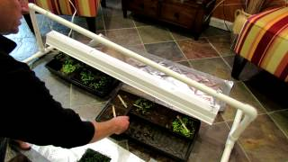 Part 2 Of 2 Garden Grow-light Station - How To Manage Lighting And Watering: The Rusted Garden 2013