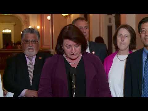 Senate President pro Tem, Toni G. Atkins Comments on CA State Budget