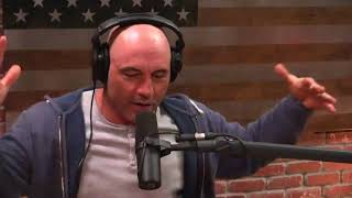 Joe Rogan on Slave Auctions in 2017