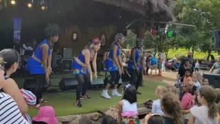 Mzuri at Werribee Zoo - 2017