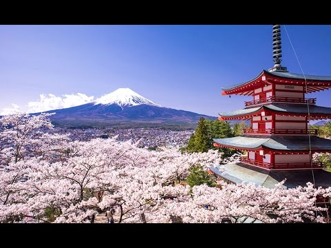 japan-vlog-travel-guidein-japan-sail-with-me-japan-travel-checklist-part-5