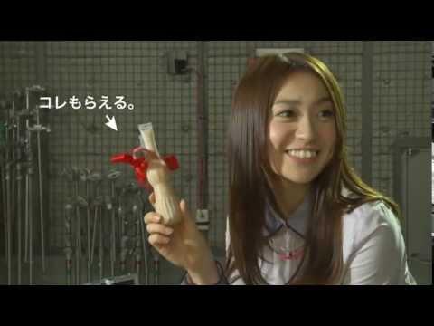 AKB48 パピコTVCM本当にパピコを半分こ篇15秒