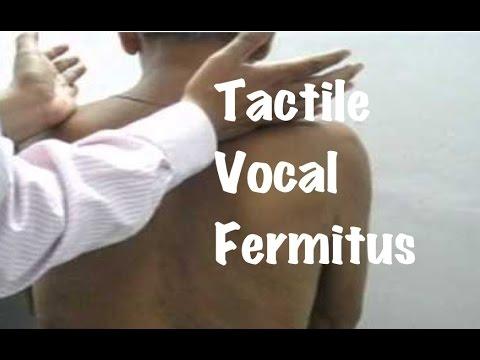 Quick Clinical Internal Medicine: Increased Or Decreased Tactile Vocal Fermitus ( Resonance)