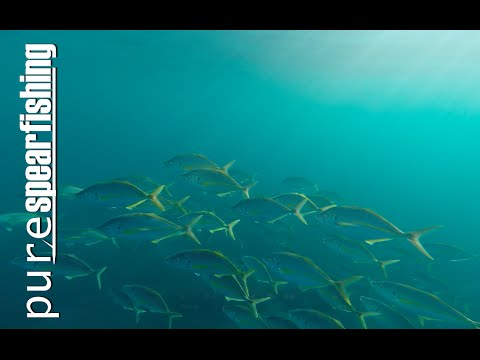 """Pure Spearfishing-Spearfishing Show with Manolis Giankos-EP.2-""""Agios Efstratios"""""""