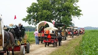 2013 Southern Indiana Draft Horse And Mule Assoc. Wagon Rides