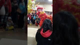 Phap Quang Lion Dance 2019 4