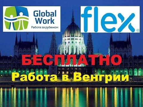Работа в Венгрии с получением ВНЖ! Завод Flex лучший выбор для жизни и работы в Европе!