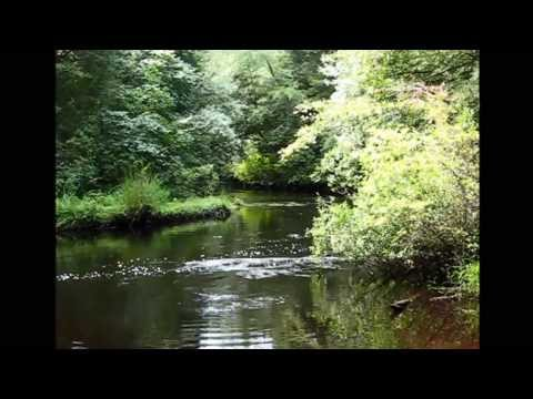 Wading River Aug 2013 and W Ackerman music