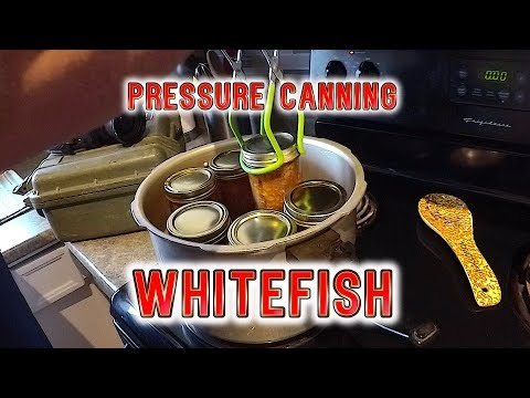 Pressure Canning Whitefish (How-to)
