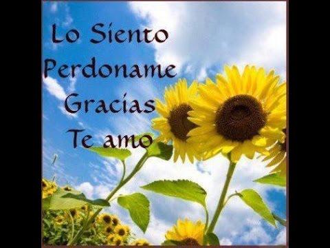 IHOPONOPONO (EL PERDON) LO SIENTO, PERDONAME, TE AMO, GRACIAS
