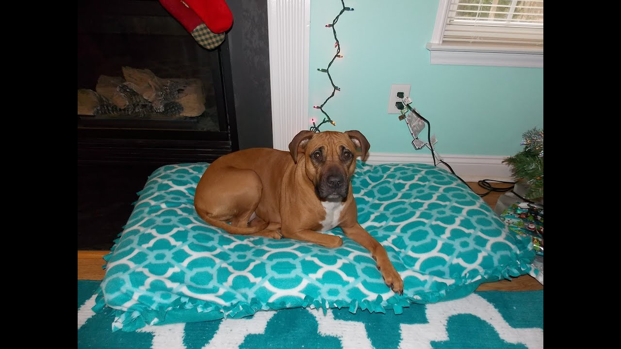 DIY Recycled Dog Bed - No Sew - YouTube