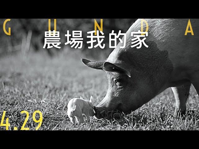 4/29《農場我的家》官方預告|榮獲奧斯卡金像獎最佳紀錄片15強