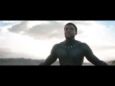 The Black Panther  (erste Link Kostenlos)