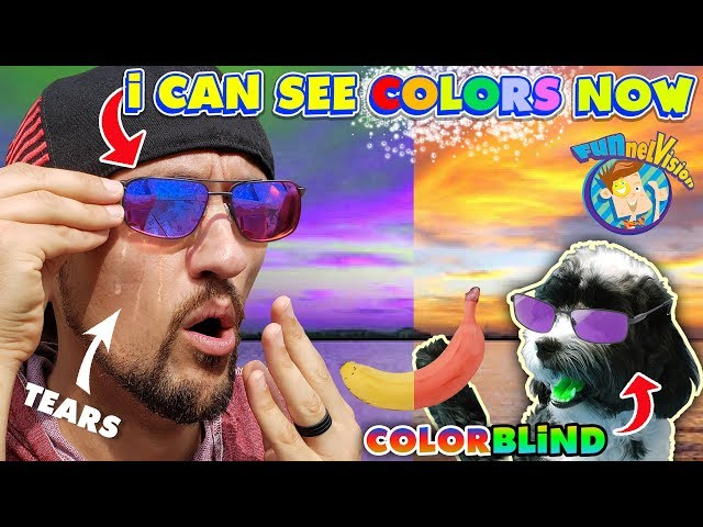 COLOR BLIND GLASSES CURED MY VISION Reaction (The Truth) FV Family