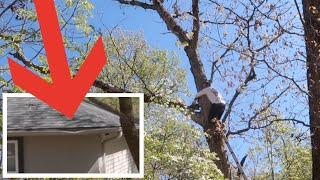A TREE HIT OUR HOME | BRAD AND RACH