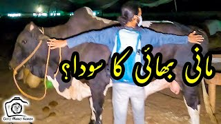 Bachra @AR Maani Ko Kyun Pasand Aya? Sohrab Goth Cow Mandi VIP Cattle Bulls UNLOADING Bakra Eid 2021