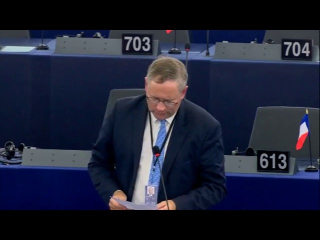 Gilles Lebreton sur le projet de listes transnationales pour les élections européennes de 2019
