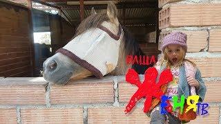 Детский канал на ранчо Кормим лошадей Доброе видео для детей