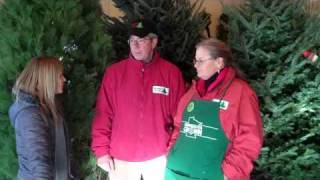 Casey Learns the Ins and Outs of Growing Christmas Trees