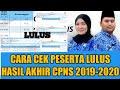 CARA MUDAH CEK / MELIHAT HASIL SELEKSI CPNS 2019-2020 🖥CEK LULUS CPNS