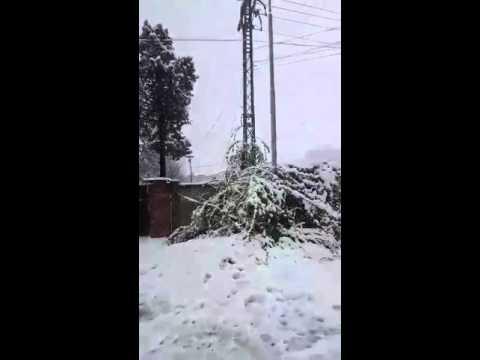 Ayub Medical college Snowfall 2016 #2