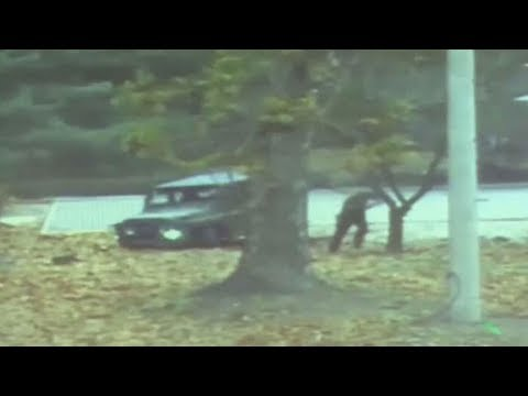Thumbnail: North Korean Defector Escapes After Getting Shot 5 Times