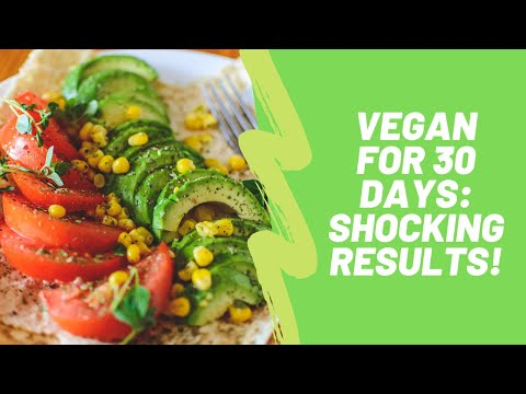 i-went-vegan-for-30-days:-shocking-results!-(and-december-2019-weight-loss-update)