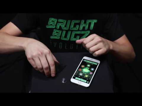 Bright Bugz Evolution Instruction Video Fun Promotion YouTube