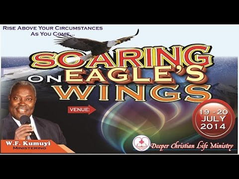 Soaring With The Renewed Eagle