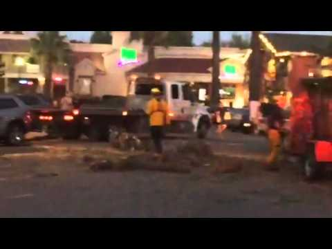 Tree falls in downtown Paso Robles