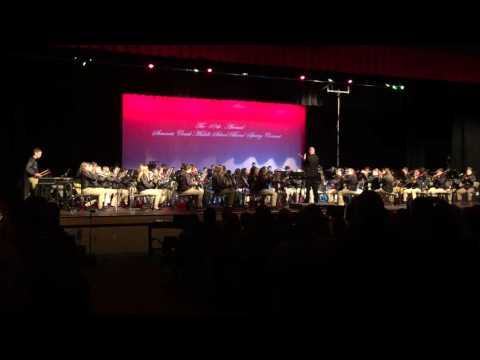 Stewarts Creek Middle School Spring Concert 2016