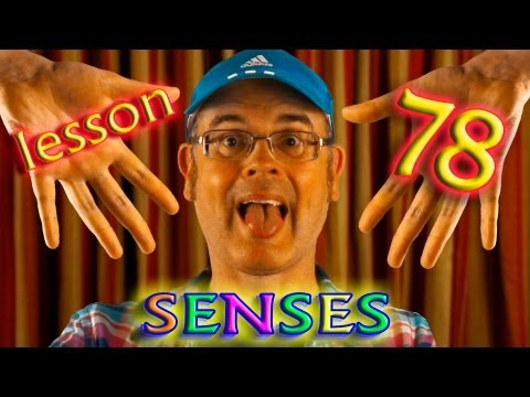 Learning English - The Human Body - The five senses - What are the 5 senses?
