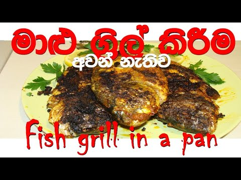 Fish Grilled In A Pan /grill Fish In A Pan/grigliare Il Pesce In Padella/ මාළු ග්රිල්  කරමු