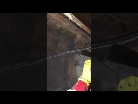 Mold Growth Removal Using Soda Blasting | Mold Remediation | Lancaster, PA | E.h.c