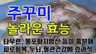 [#주꾸미효과] 주꾸미의 놀라운 효능 10가지 (타우린…