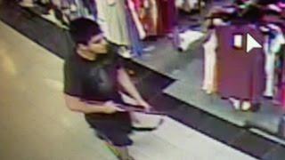 Manhunt for Washington mall shooter underway