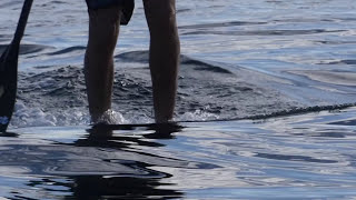 Modern Productions 15.5 SUP Surfing Hawaii & Tahiti