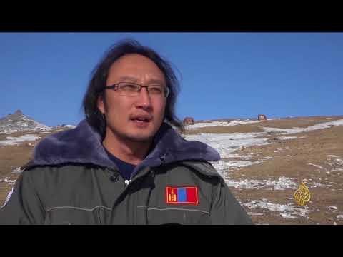 هذا الصباح-منغوليا تكافح لحماية خيول البرزوالسكي  - نشر قبل 2 ساعة