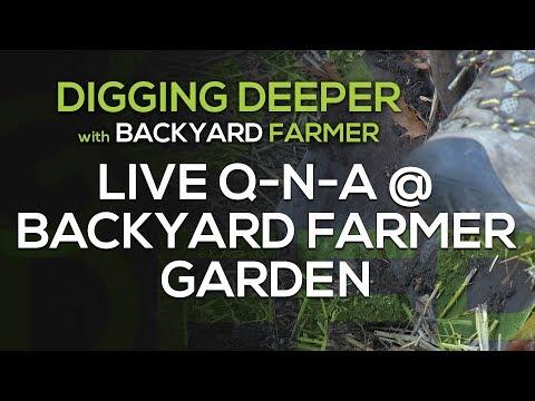 Digging Deeper Q n A