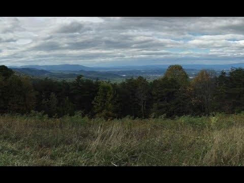 Shenandoah's Skyline Drive: A Complete Autumn Roadtrip