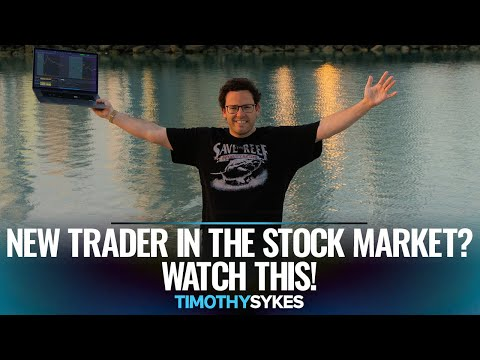 New Trader in the Stock Market? Watch This!