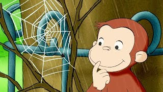 Curious George: Web Master thumbnail