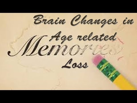 Brain Changes in Age related Memory Loss