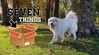 7 Things you should buy for your Great Pyrenees
