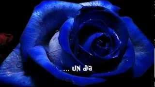 UNA ROSA BLUE ♥  GLORIA TREVI  ♥