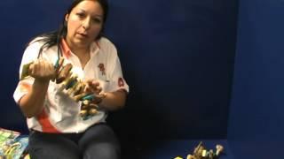 Cuidados de las mascotas: Tip +KOTA ¿Cómo usar los juguetes para aves?